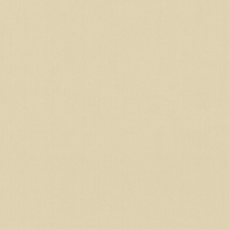 Shimmer — Cashmere