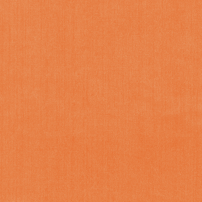 Shimmer — Tiger Lily