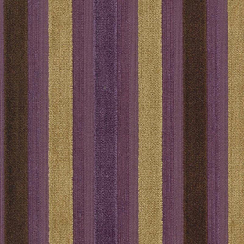 Toledo — African Violet